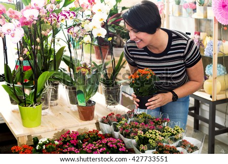Happy mature woman florist fixing a kalanchoe calandiva flower in the floral shop - stock photo