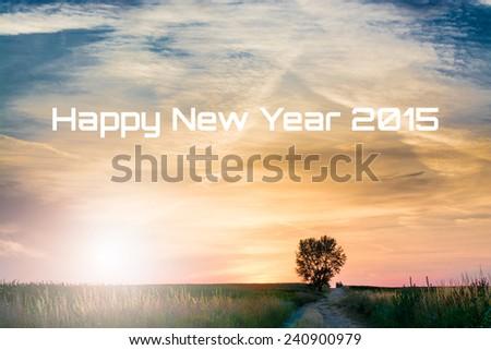 happy new year concept - stock photo