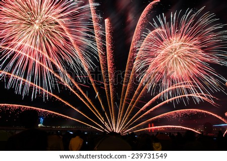 happy new year Firework In korea - stock photo