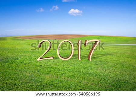 Happy New Year 2017 on lawns of the open landscape.
