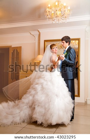 Happy newly-married couple in a beautiful interior - stock photo