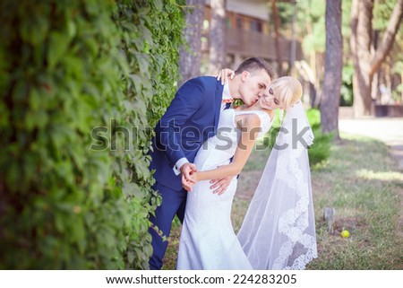 happy newlyweds - stock photo