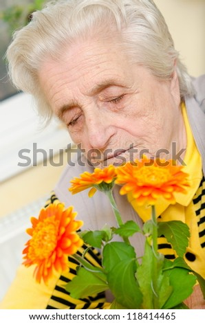 Happy old gray-haired woman smells a flower - stock photo