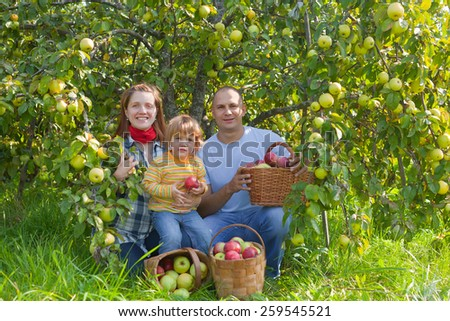 Happy parents and child with basket of harvested apples in garden - stock photo