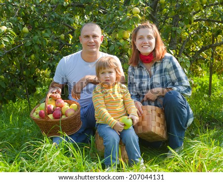 Happy parents and child with baskets of harvested apples in garden - stock photo