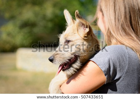 happy red homeless puppy dog with young women