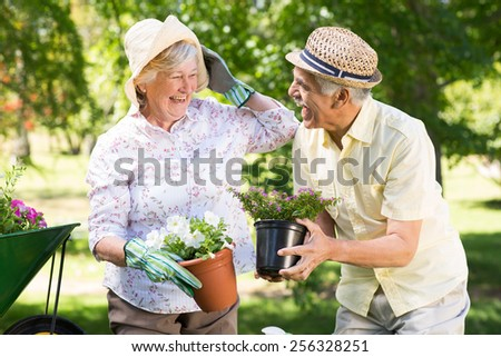 Happy senior couple gardening on a sunny day - stock photo