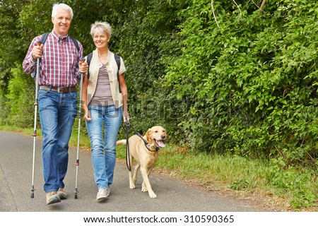 Happy senior couple hiking with labrador retriever dog in summer - stock photo