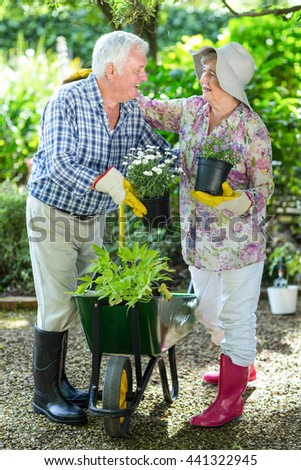 Happy senior couple holding flower pots while standing in garden - stock photo