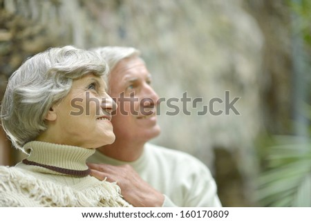 Happy senior couple walking in fallpark - stock photo
