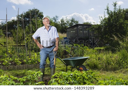 Happy senior man standing in community garden