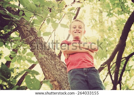 Happy smiling boy  in a tree.  Instagram effect. - stock photo