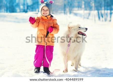 Happy smiling child and white Samoyed dog on leash walking winter - stock photo