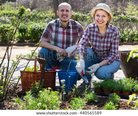 Happy smiling elderly couple gardening with flowers in the backyard in sunny day