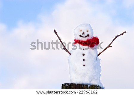 Happy snowman against the sky smiling at you
