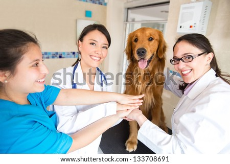 Happy team of doctors at the vet with hands together - stock photo