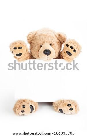 Happy teddy bear holding blank board - stock photo