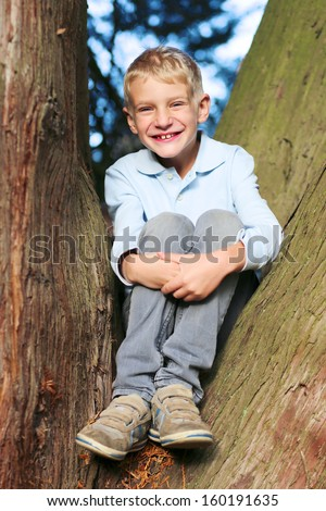 Happy teenager boy sitting between the branches of the old big tree in the forest on a sunny autumn day - stock photo