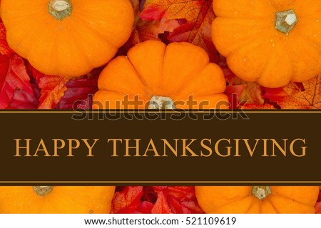 Happy Thanksgiving Greeting, Some pumpkins and fall leaves with text Happy Thanksgiving