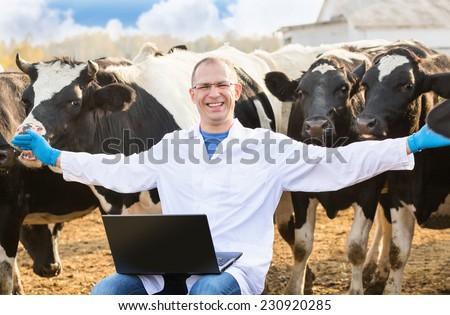happy veterinarian with laptop on cow farm - stock photo