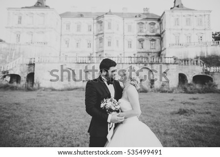 Happy wedding couple hugging and kissing on background old castle
