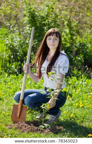 Happy woman planting  currant in spring - stock photo