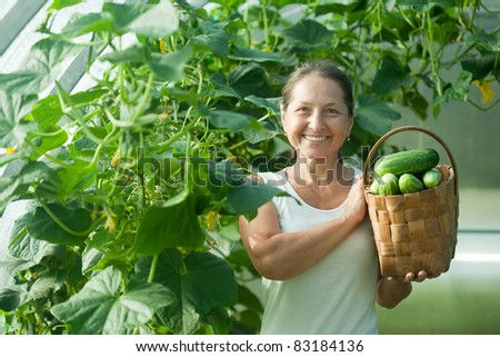 Happy woman with harvested cucumbers in the hothouse