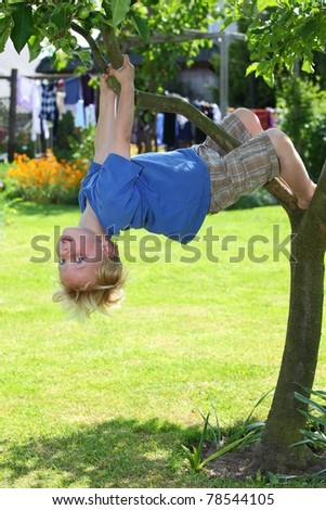 Happy young boy climbing in a tree - stock photo