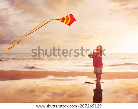 Happy young boy flying kite on summer afternoon at the beach - stock photo