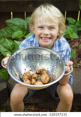 Happy, young boy holding a bowl of organic potatoes from his garden - stock photo