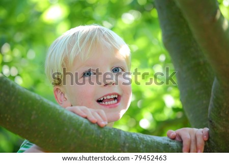 Happy young boy sitting in a tree - stock photo