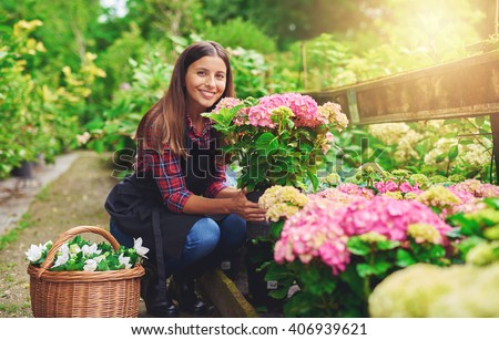 Happy young gardener selecting hydrangea plants for her garden from the stock at a commercial nursery smiling as she displays her choice to the camera - stock photo