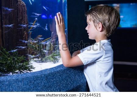 Happy young man looking at fish in tank at the aquarium - stock photo