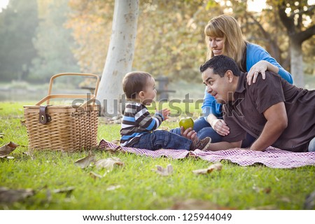 Happy Young Mixed Race Ethnic Family Having a Picnic In The Park. - stock photo