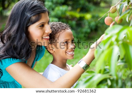 happy young mother and son looking at litchis in litchi orchard - stock photo