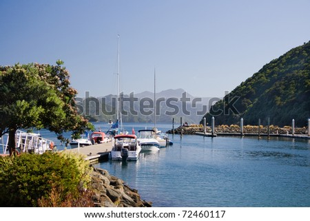Harbor view in Picton, New Zealand - stock photo