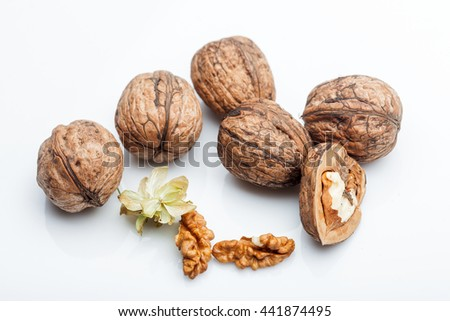 hard mature walnuts in shell brown color with kernel isolated on white background