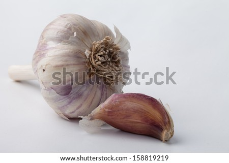 Hard to find organic Spanish Roja garlic bulb and clove on a white background - stock photo