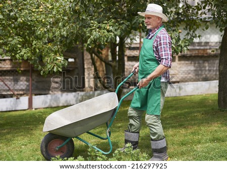 Hard working mature man in garden