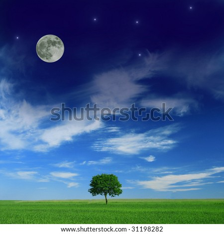 Harmony between day and night - stock photo