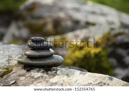 harmony in nature - stock photo