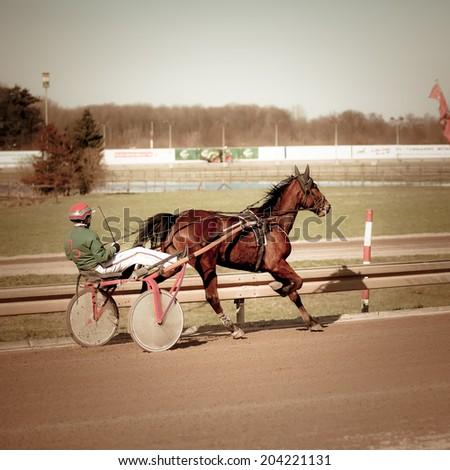 Harness Racing .horse - stock photo