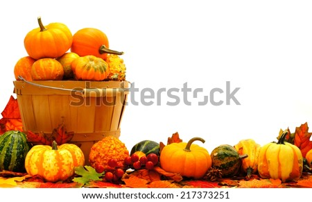 Harvest basket and autumn pumpkin and vegetable border          - stock photo