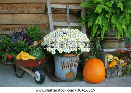 Harvest decorations with pumpkins and gourds along with flowers and much more. - stock photo
