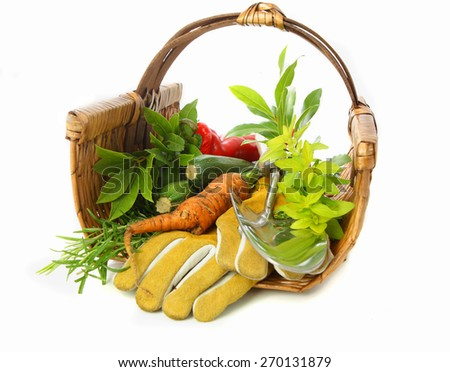 Harvest food and tools in a basket - stock photo