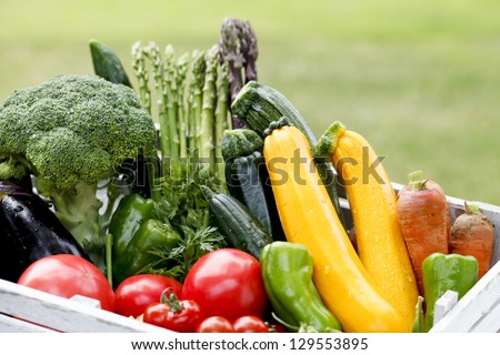 Harvest home garden - stock photo