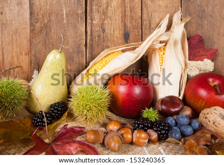 Harvest image with autumn fruits corncobs and fall leaves