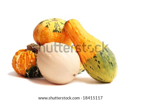 harvest of decorative pumpkins isolated on white background - stock photo