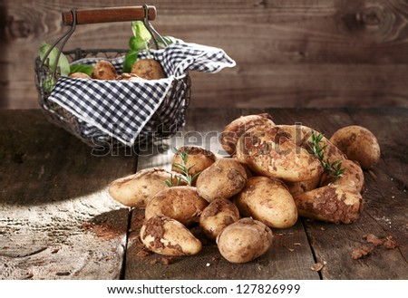 Harvest of farm fresh potatoes with clinging soil and a pretty country basket with a fresh blue and white napkin on a rustic textured wooden surface - stock photo