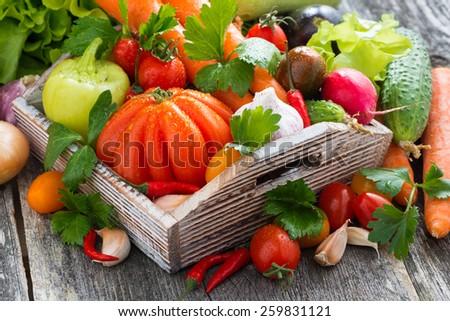 harvest of fresh seasonal vegetables in a wooden box, horizontal - stock photo